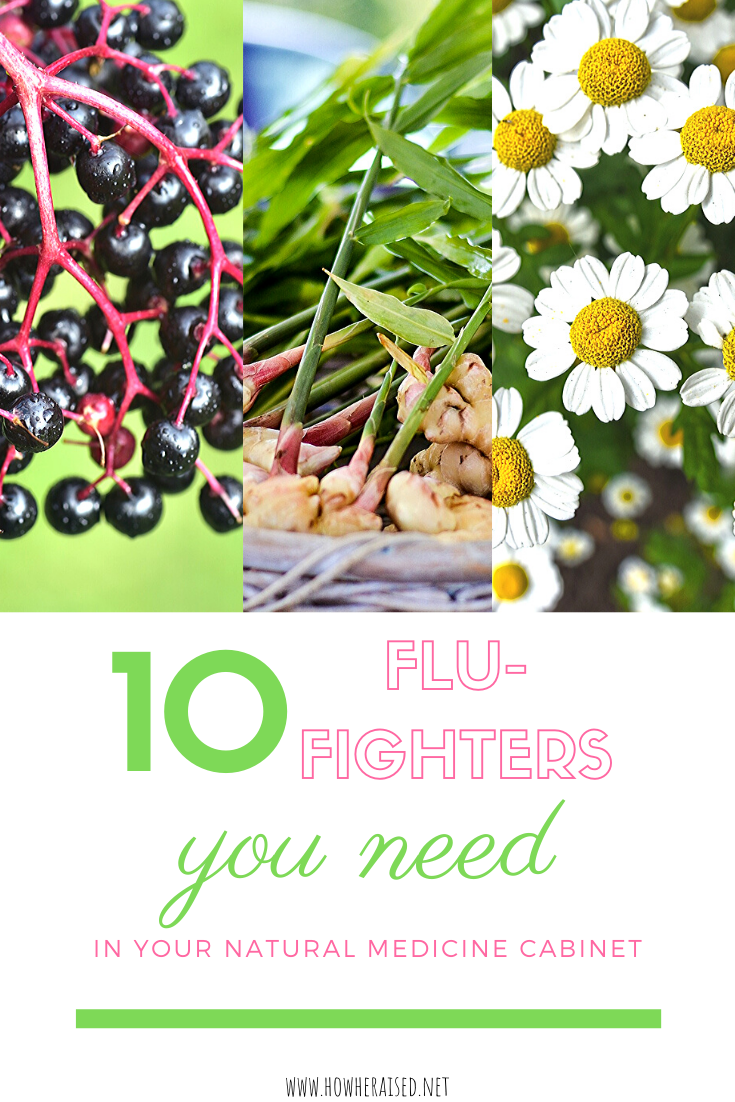 10 Flu-Fighters You Need in Your Natural Medicine Cabinet